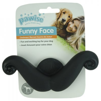 Pawis Funny Face Photo Gadget