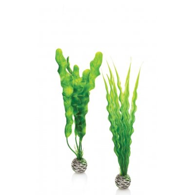 biOrb Aquarium Deko Easy Plant Grüne Pflanzen 2er Set